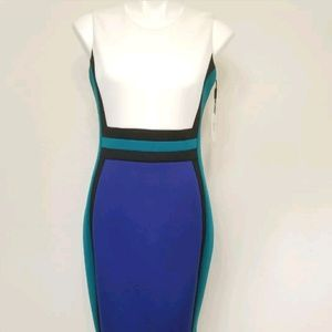 Calvin Klein Women's Colorblocked Dress